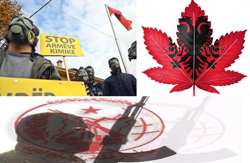 MEK Iran Albania: Toxic Waste, Cannabis and the Iranian Mojahedin Khalq (Rajavi cult)